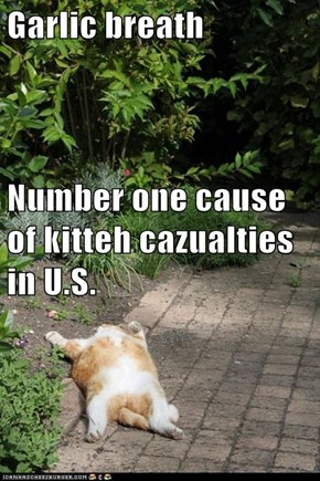 Garlic breath Number one cause of kitteh cazualties in U.S.