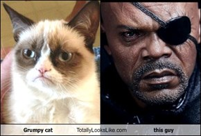 Grumpy cat Totally Looks Like this guy