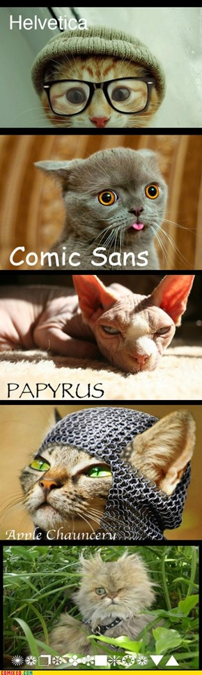 Five Cats & the Fonts They Represent