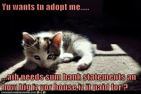 Yu wants tu adopt me.....  ...aih needs sum bank statements an how big iz yor house,iz it paid for ?