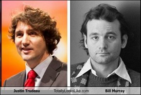 Justin Trudeau Totally Looks Like Bill Murray