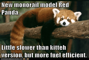 New monorail model Red Panda.  Little slower than kitteh version, but more fuel efficient.