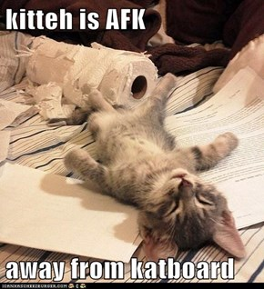 kitteh is AFK  away from katboard