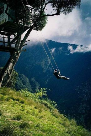 Are You Brave Enough for This Swing Set?