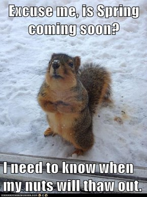 Excuse me, is Spring coming soon?  I need to know when my nuts will thaw out.