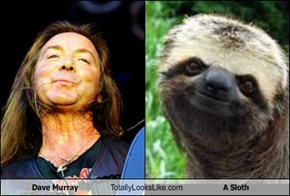 Dave Murray Totally Looks Like A Sloth