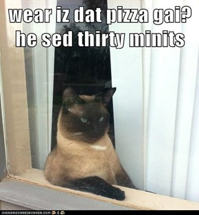 wear iz dat pizza gai?  he sed thirty minits