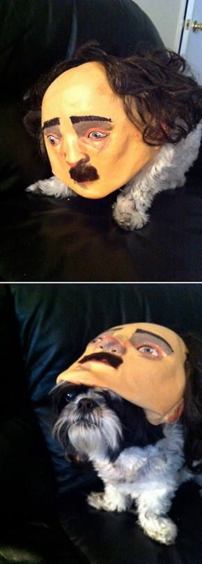 "Quoth the Raven, ""NEVER WEAR THAT MASK AGAIN, DOG, ITS FREAKING ME OUT""."