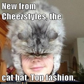 New from Cheezstyles, the   cat hat. Top fashion.