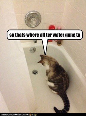 so thats where all ter water gone to