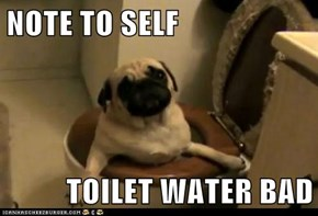 NOTE TO SELF  TOILET WATER BAD
