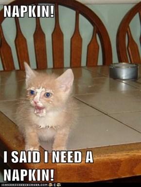 NAPKIN!  I SAID I NEED A NAPKIN!