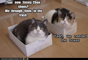 Your   new   Jimmy  Choo   shoes?  We  through   them   in  the   trash.