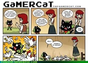 Cat vs Cuccos