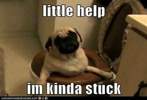 little help  im kinda stuck