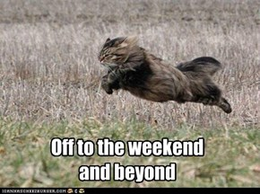 Off to the weekend  and beyond