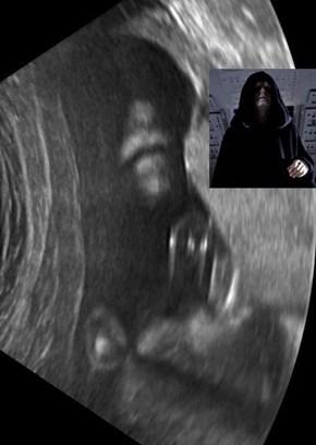 Emperor Embryo