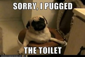 SORRY, I PUGGED   THE TOILET