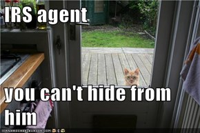 IRS agent  you can't hide from him