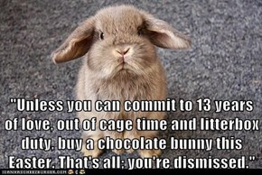"""Unless you can commit to 13 years of love, out of cage time and litterbox duty, buy a chocolate bunny this Easter. That's all; you're dismissed."""
