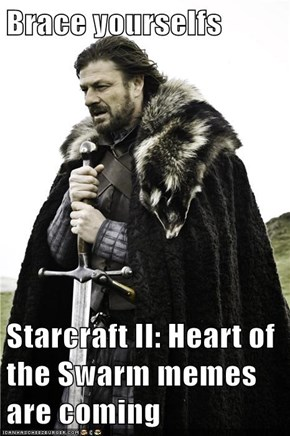 Brace yourselfs  Starcraft II: Heart of the Swarm memes are coming