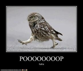 POOOOOOOOP