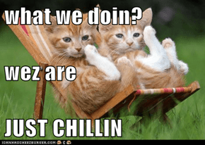 what we doin? wez are JUST CHILLIN