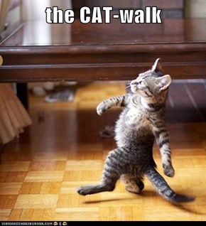the CAT-walk