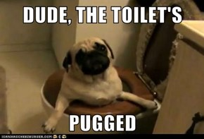 DUDE, THE TOILET'S  PUGGED