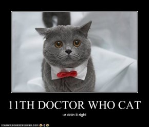 11TH DOCTOR WHO CAT