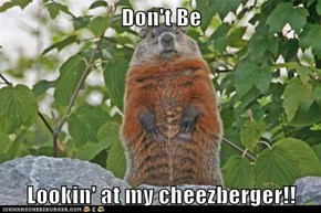 Don't Be   Lookin' at my cheezberger!!