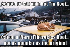 Sequel to Cat on a Hot Tin Roof...  Cat on a Warm Fiberglass Roof... not as popular as the original