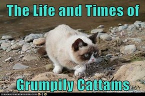 The Life and Times of  Grumpily Cattams