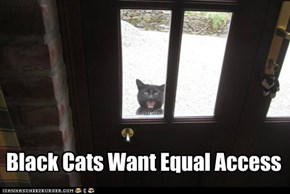 Black Cats Want Equal Access