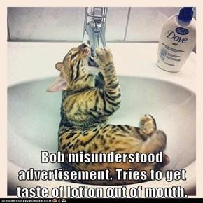 Bob Misunderstood