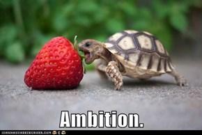 Ambition.