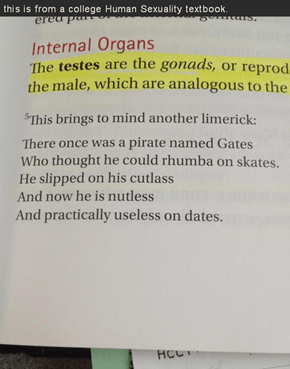 Text Book Limericks!