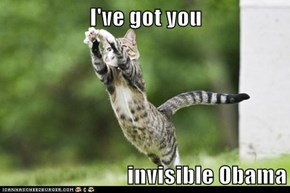 I've got you   invisible Obama