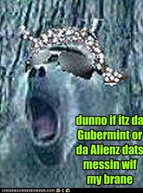 dunno if itz da Gubermint or da Alienz dats messin wif my brane