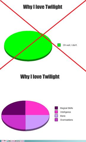 Bronies Love Twilight (Sparkle)