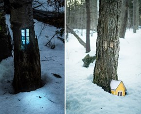 A Little Shelter in the Woods