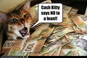 Cash Kitty says NO to a loan!!