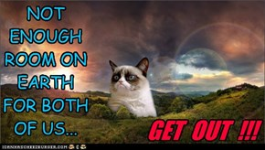 GRUMPY CAT SAYS... GET OUT !!!