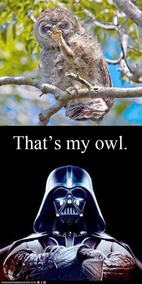 Vader's pet