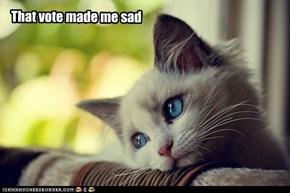 That vote made me sad