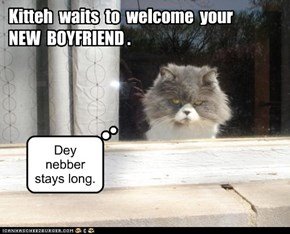 Kitteh  Waits  to  Welcome  Your   NEW  BOYFRIEND