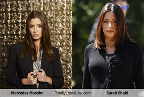 Mercedes Masohn  Totally Looks Like Sarah Shahi