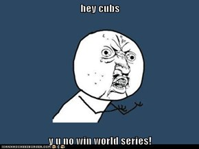 hey cubs  y u no win world series!