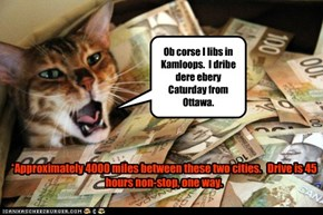 Canadian Senator Cat