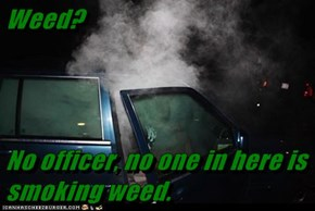 Weed?  No officer, no one in here is smoking weed.